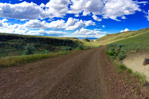 Picture of Eastern Oregon road